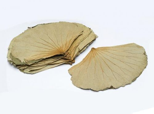 正丰荷叶*400g ZF Dried Lotus Leave400G